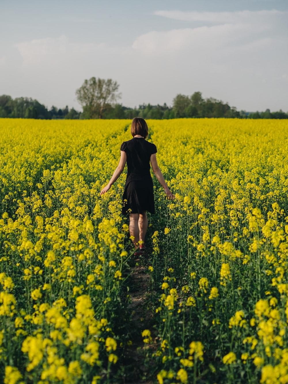 woman walking in yellow flower field