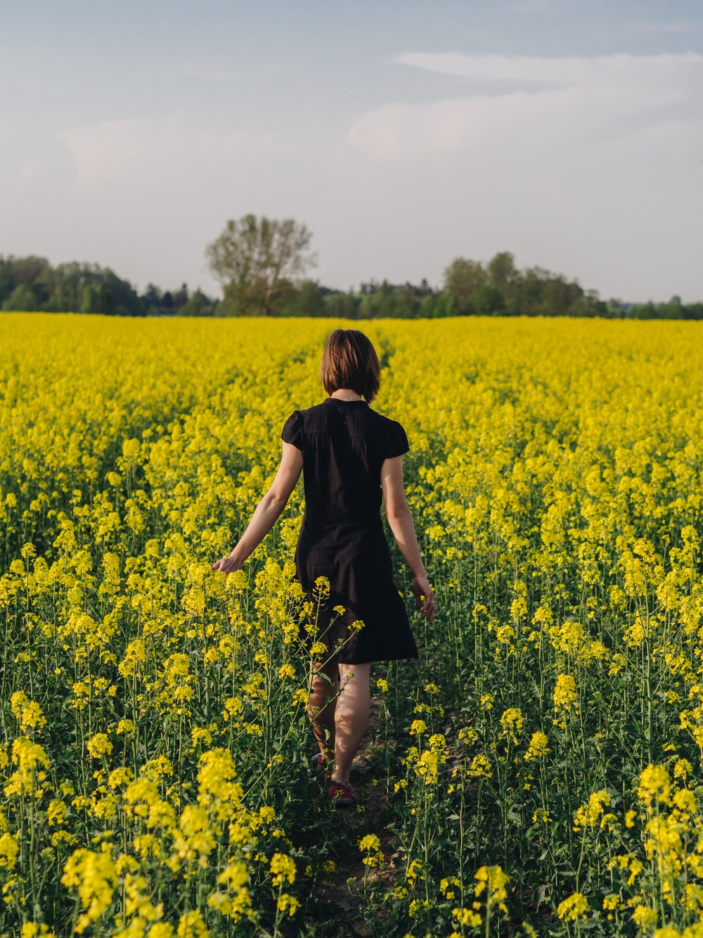 woman walking in yellow flower field