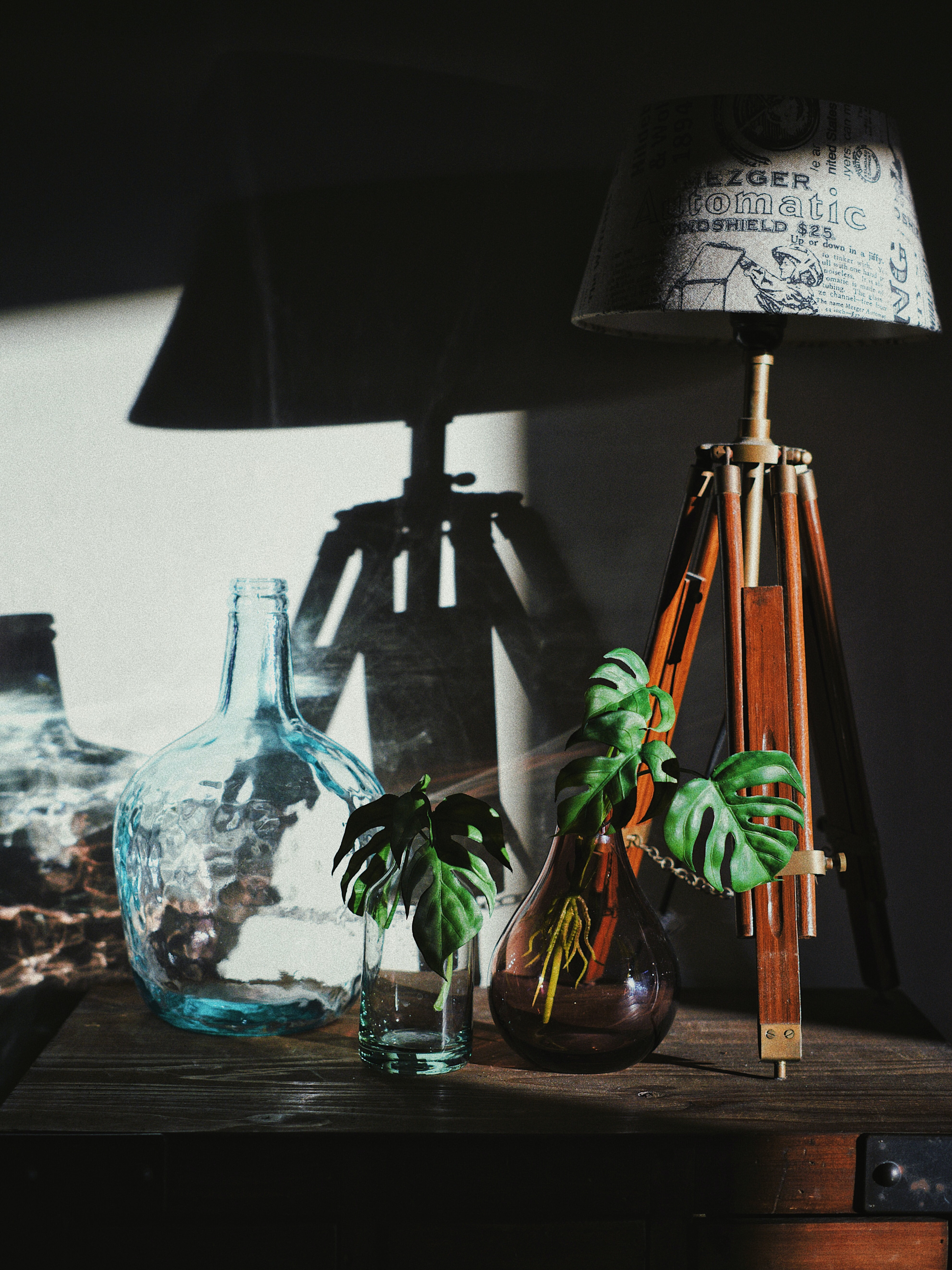 shallow focus photography of green plants on vase
