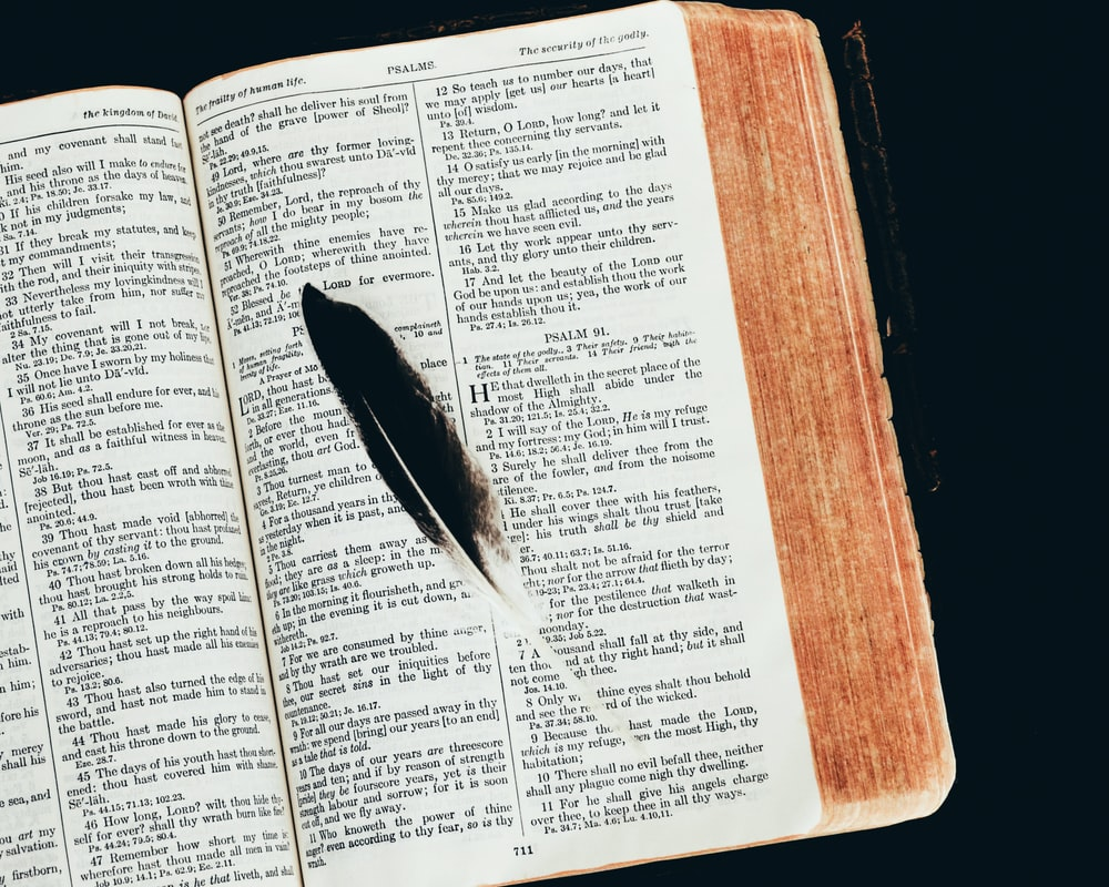 black feather on open book