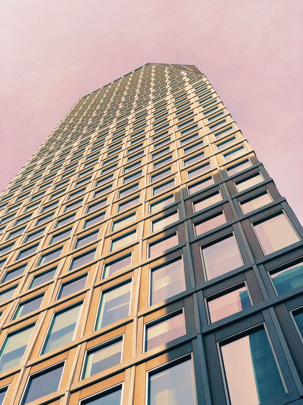 brown high-rise building