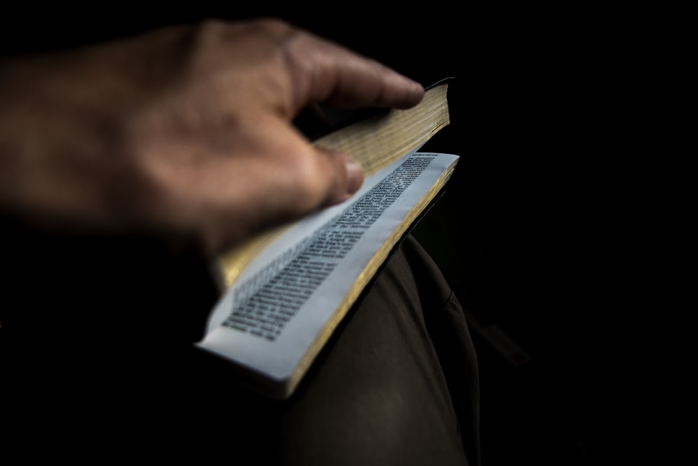 focus photography of person's hand opening book