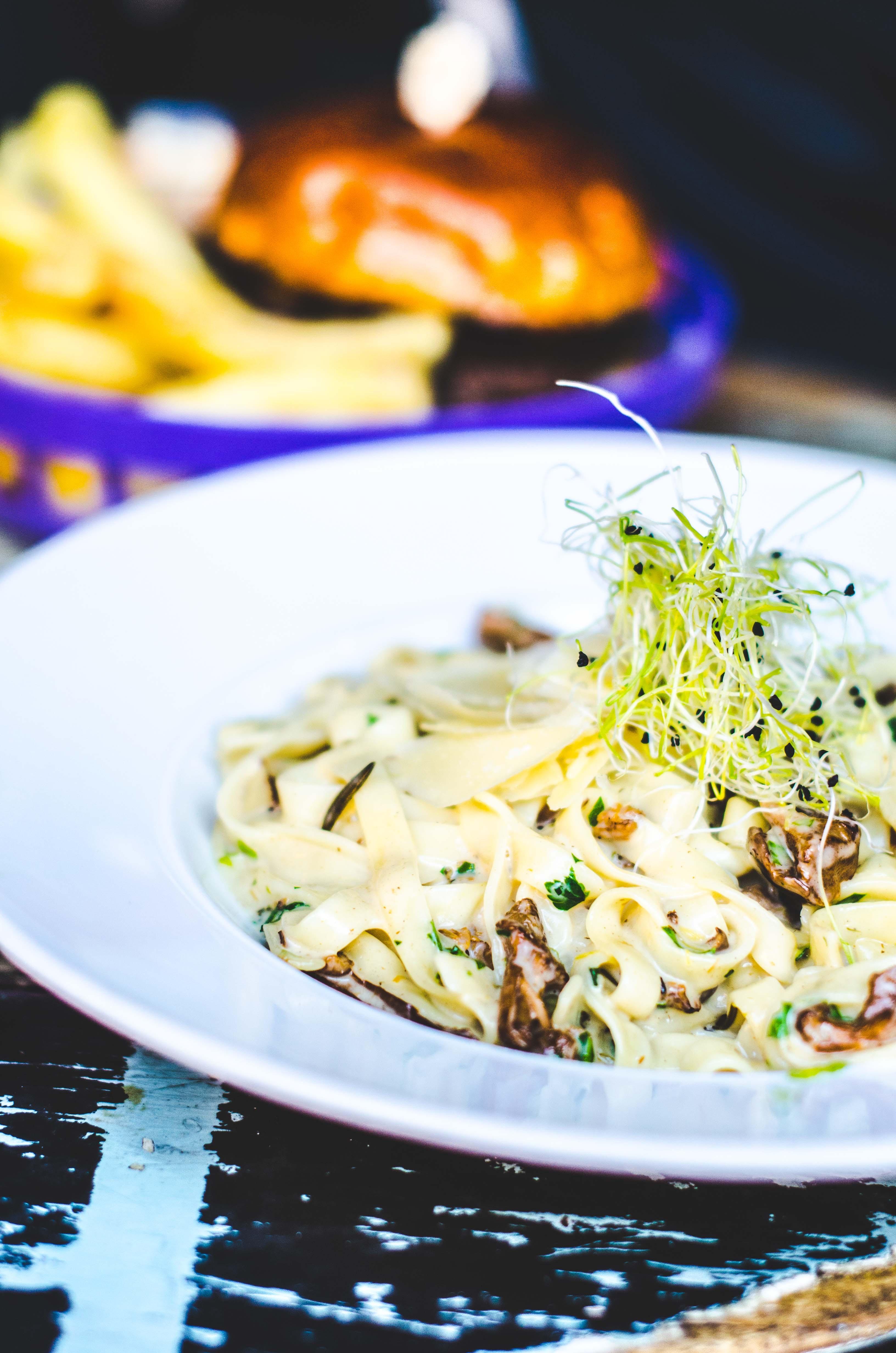 macro photography of pasta