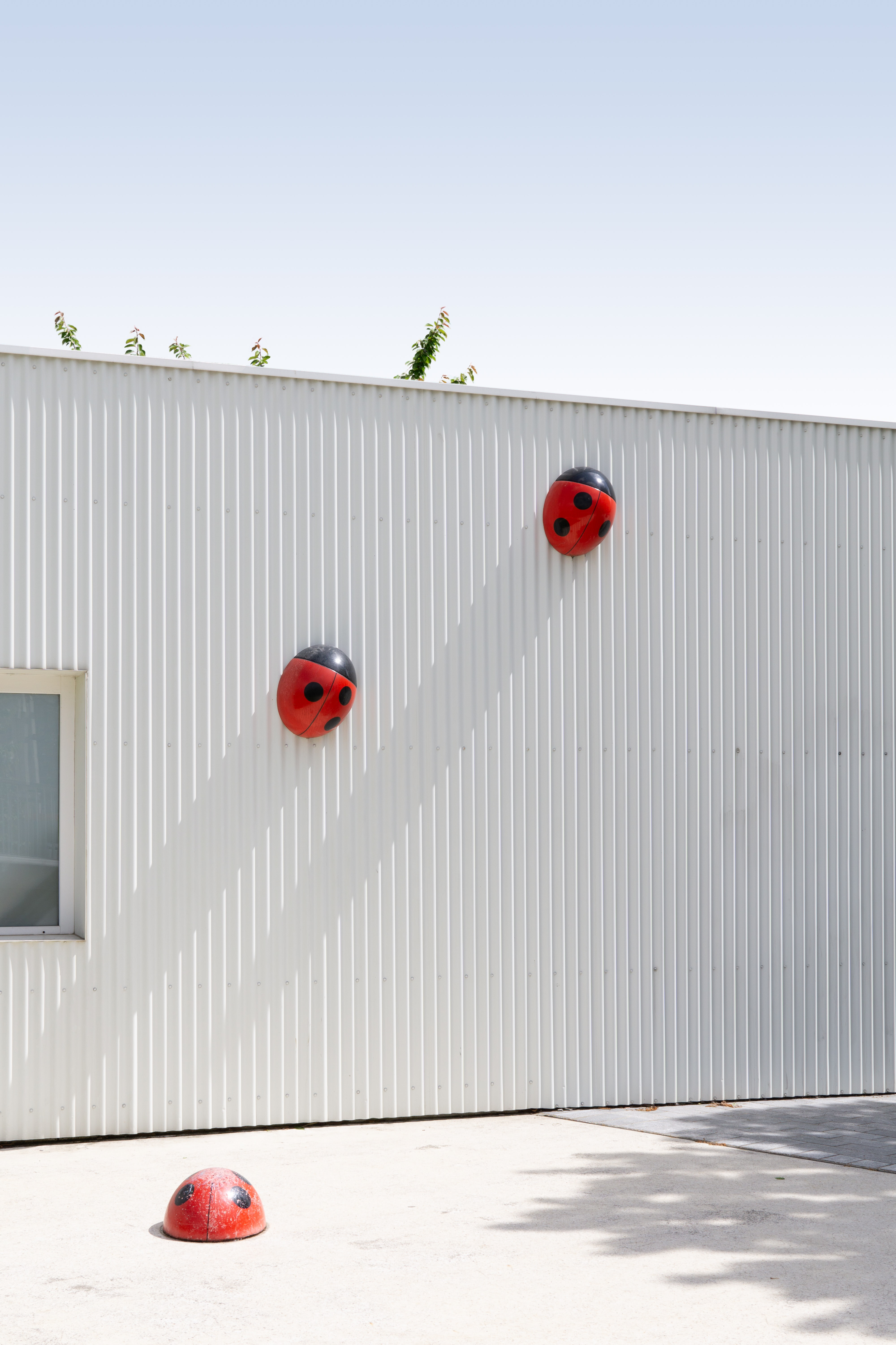 lady bug wall decors