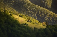 aerial photography of mountains and trees during daytime