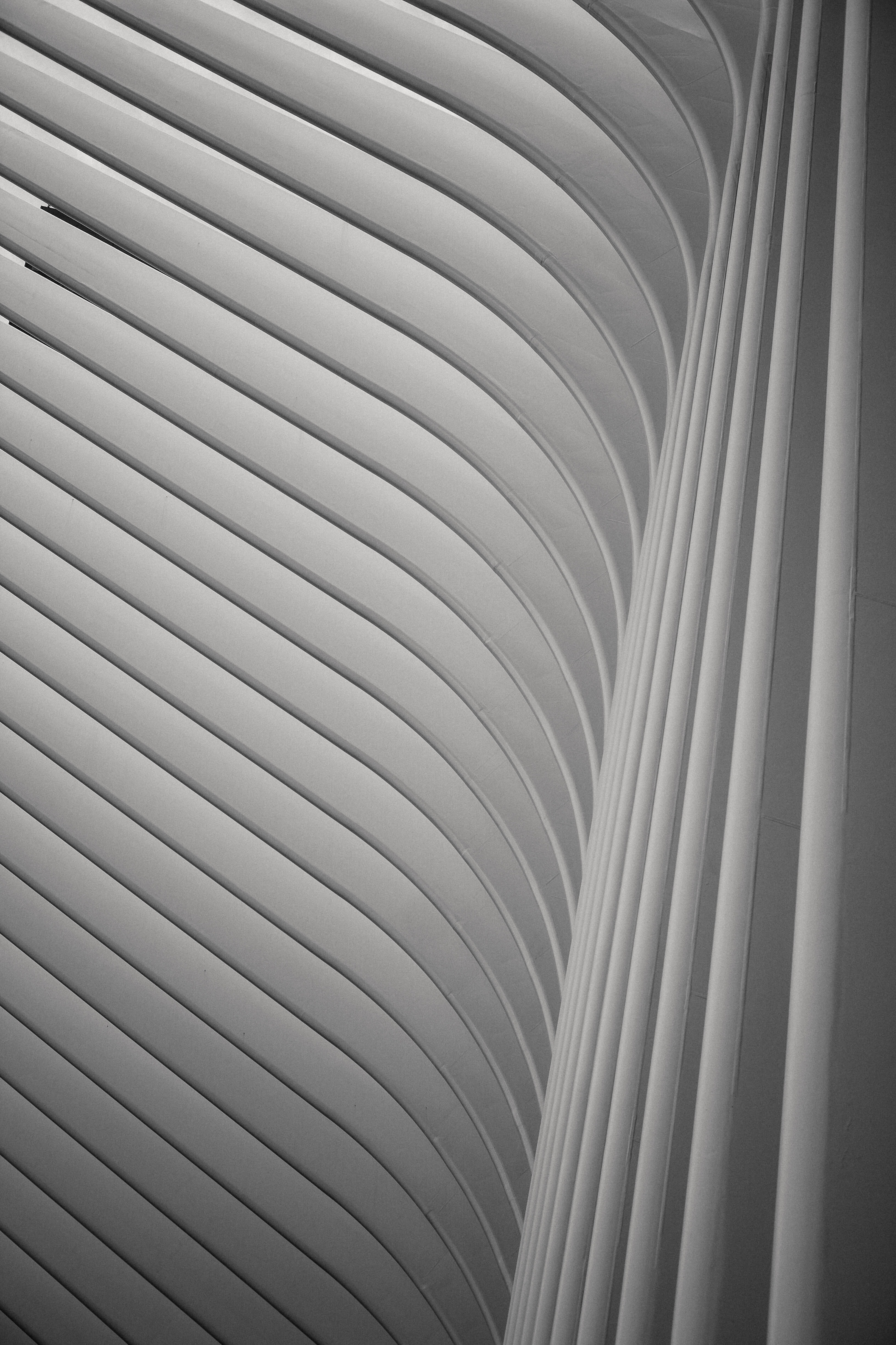minimalist photography of white archway