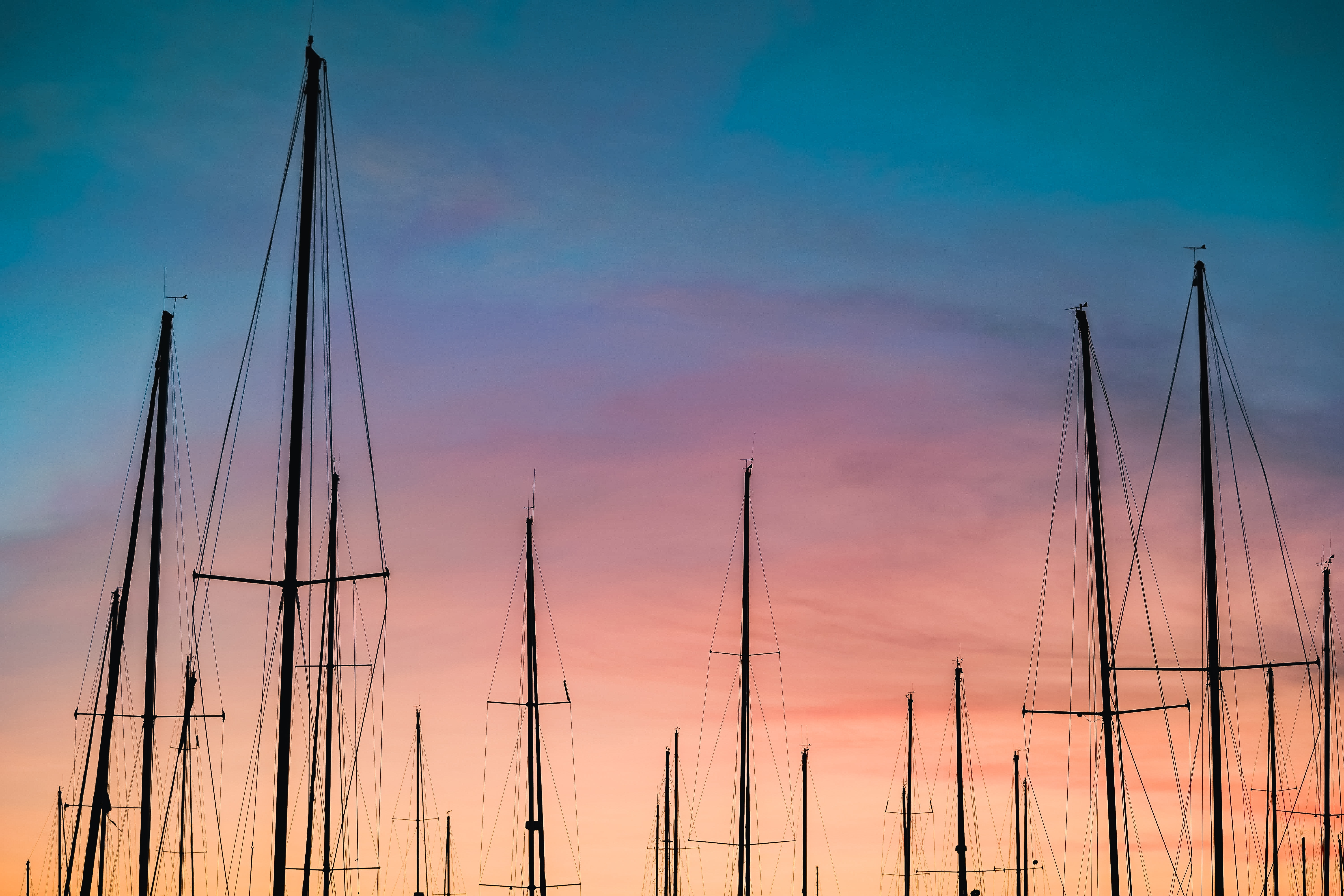 silhouette photography of sailboats