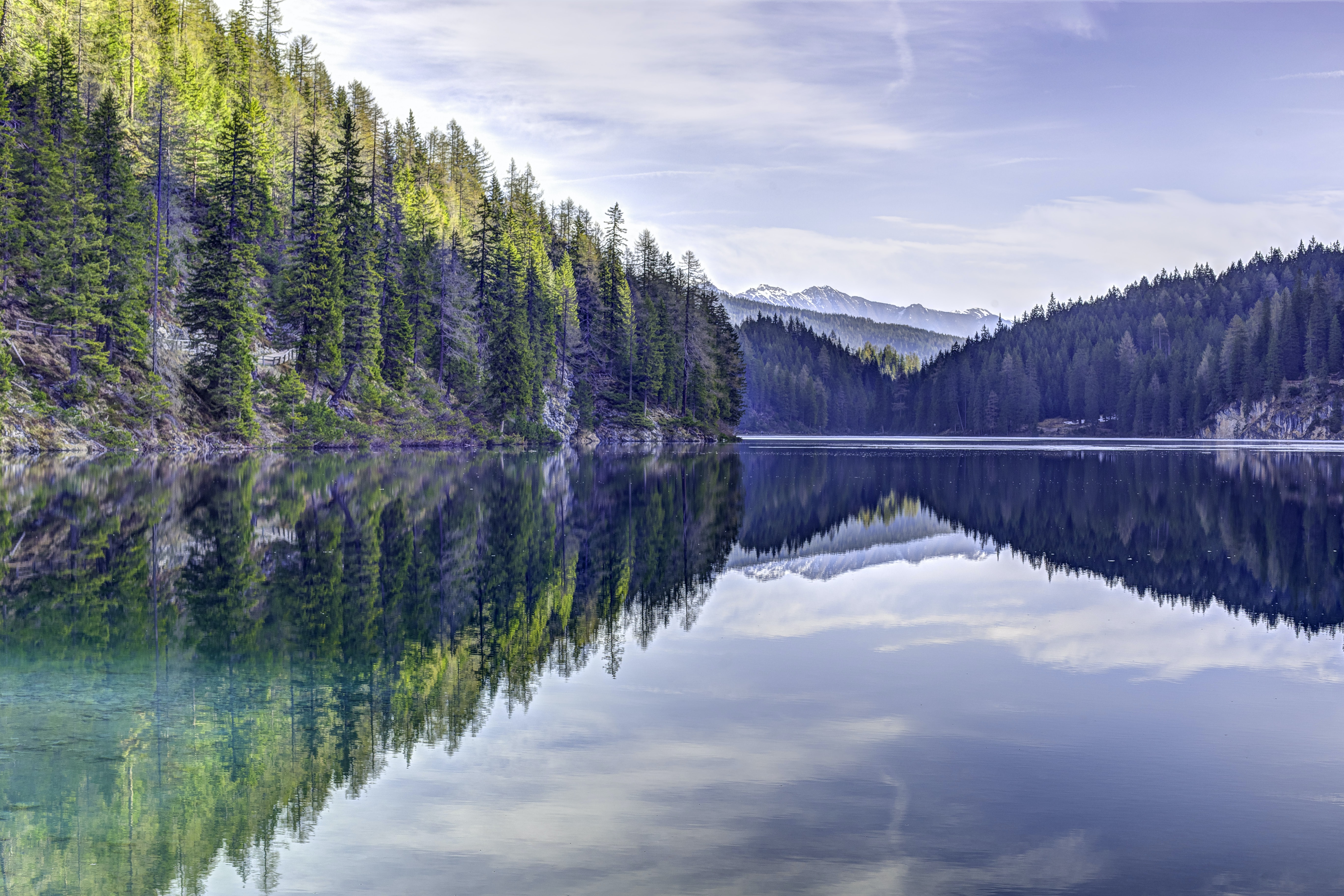 reflection of trees on body of water during daytime