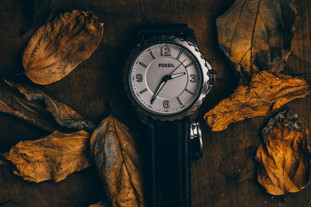 round silver-colored Fossil analog watch with black strap beside dried leaves