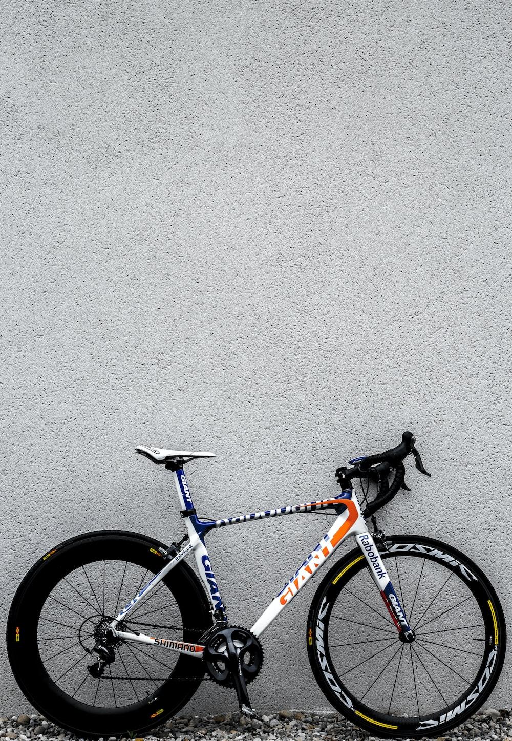 white and black Giant road bike