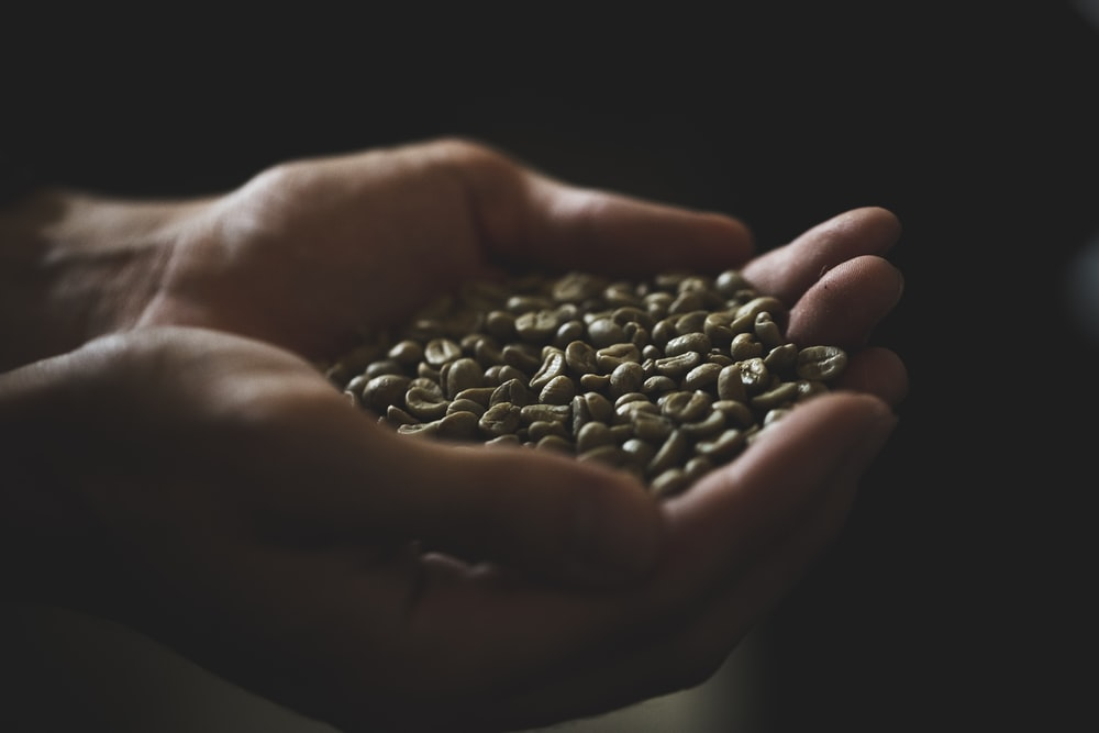 person holding beans in dark room