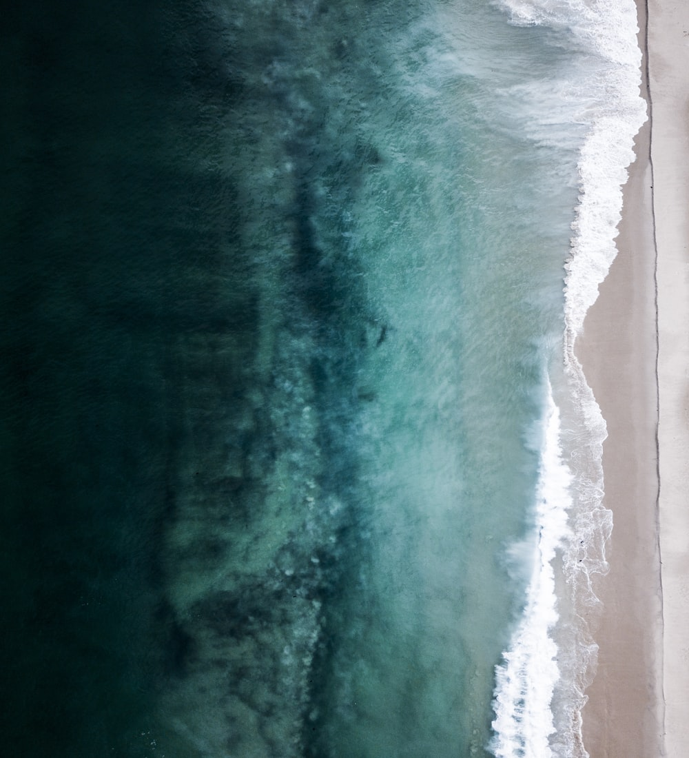 aerial view of beach shore during daytime