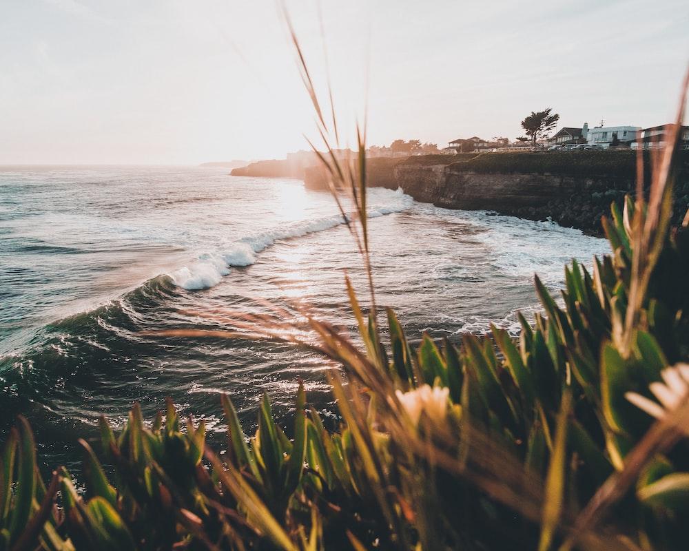 ocean wave near a cliff