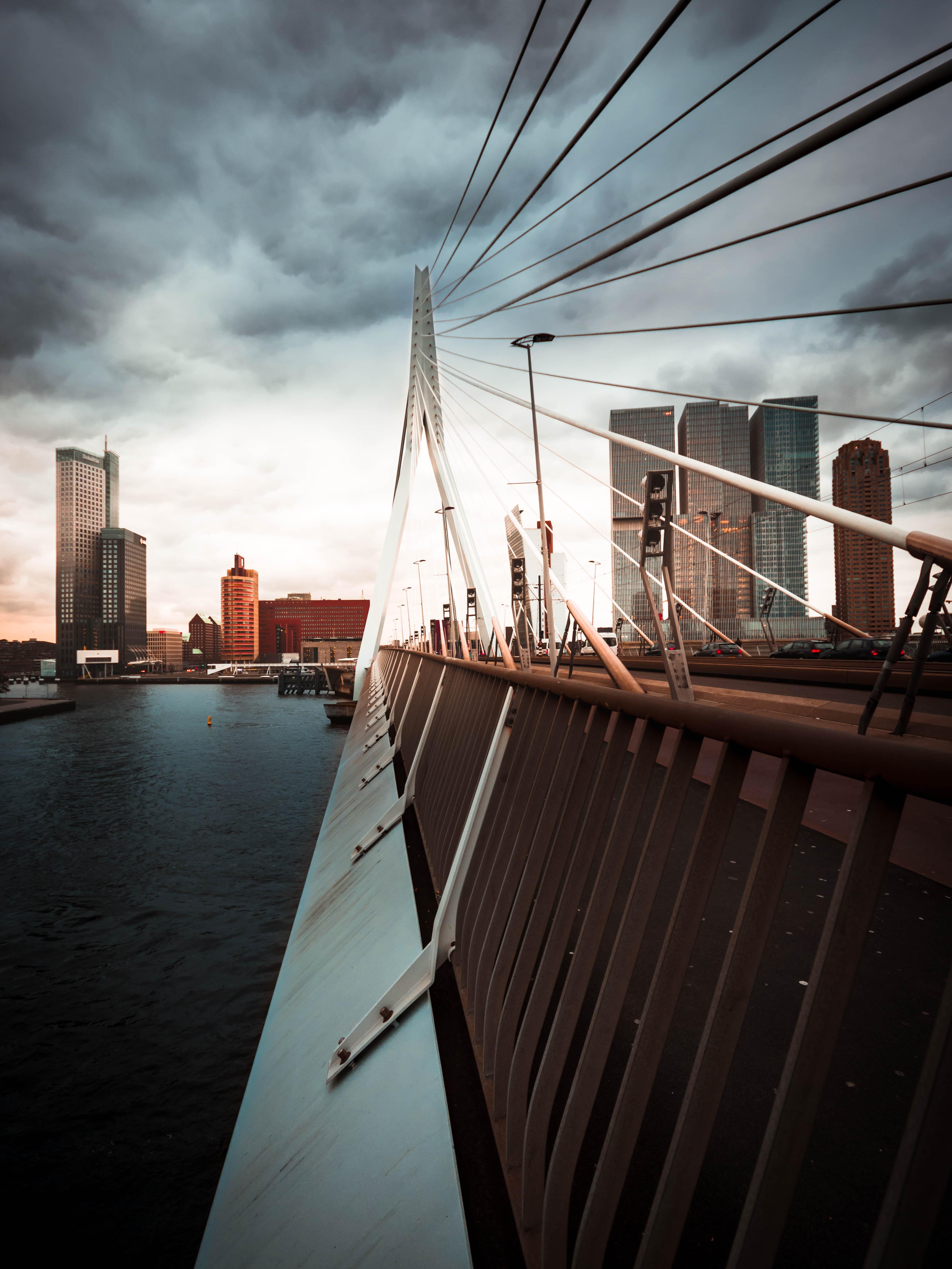 bridge beside body of water