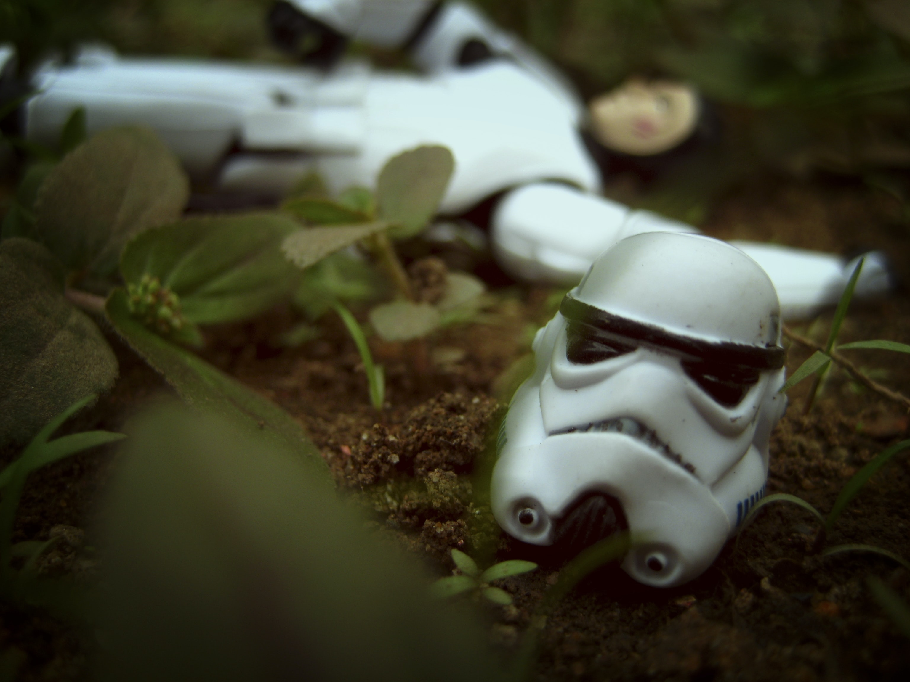 Star Wars Stormtrooper head costume on brown soil