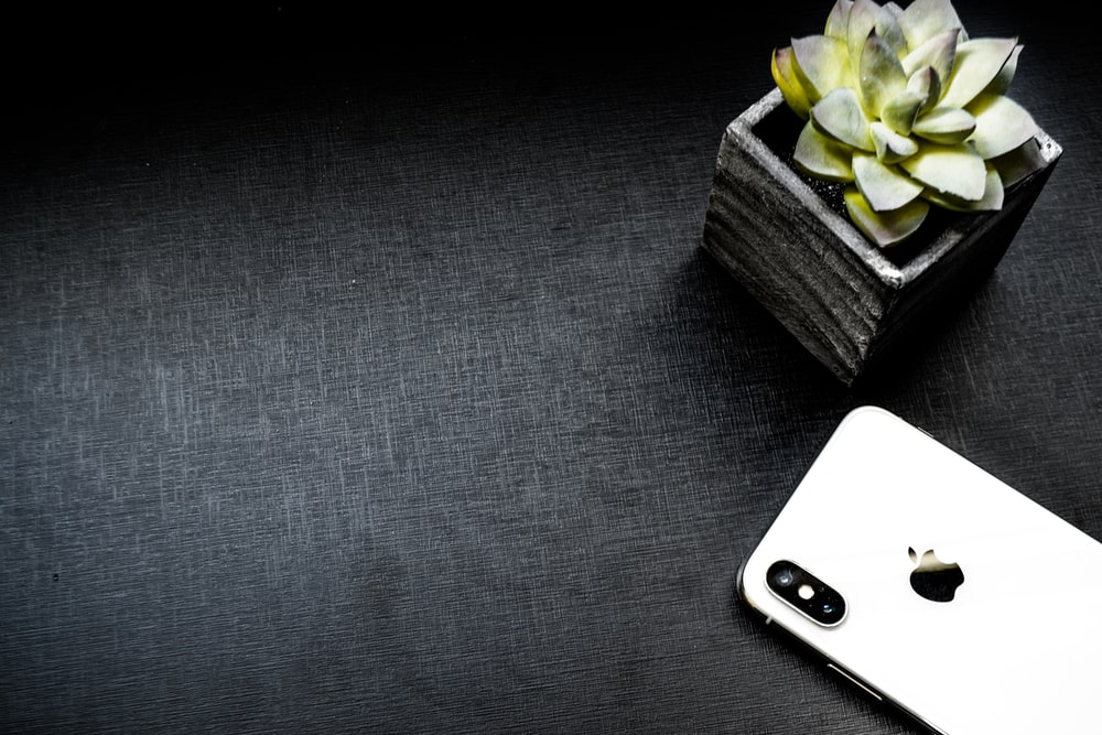 silver iPhone X beside succulent plant