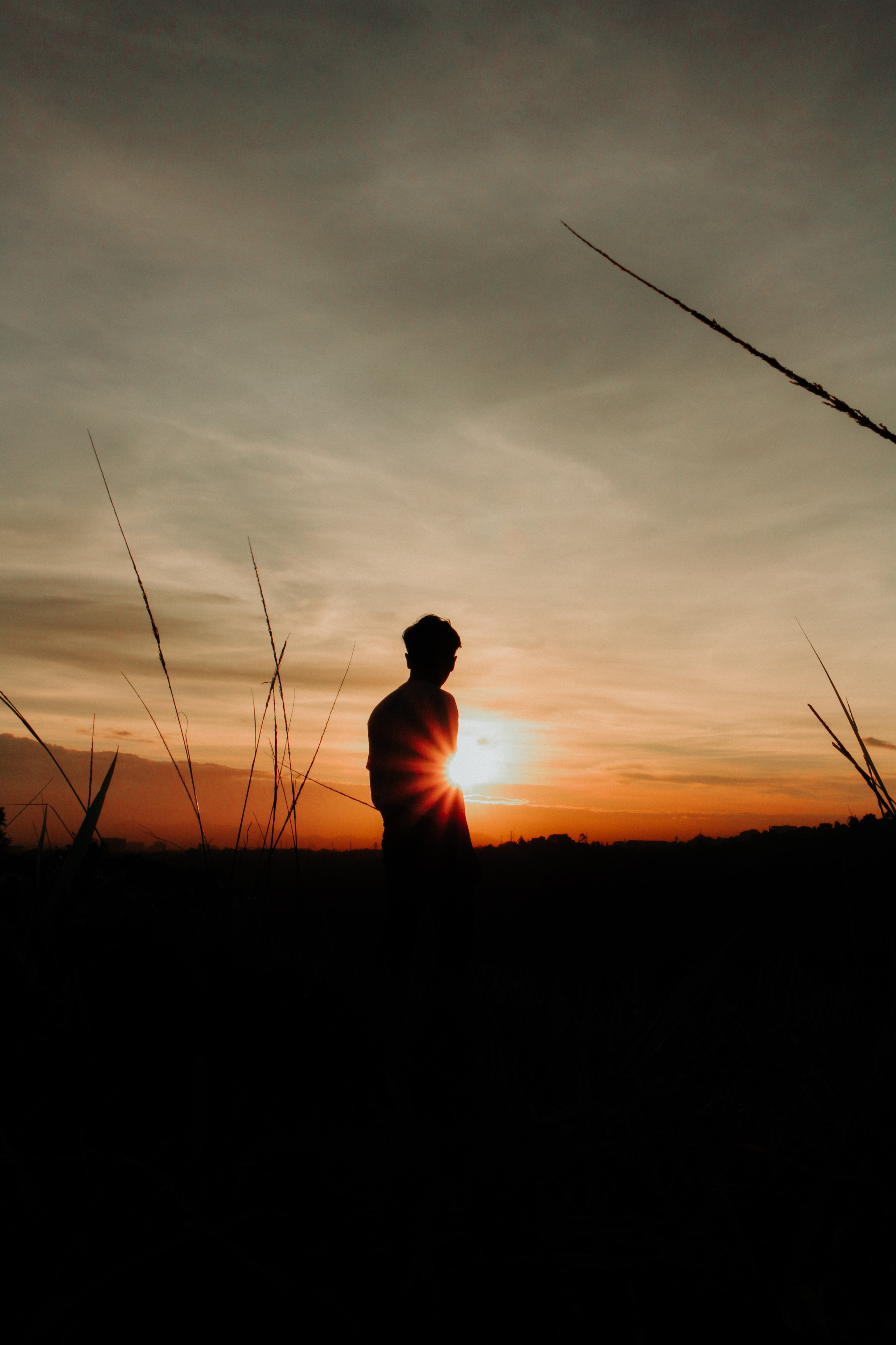silhouette of person near grass at golden hour