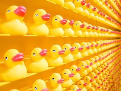 yellow rubber ducks pop art teams background