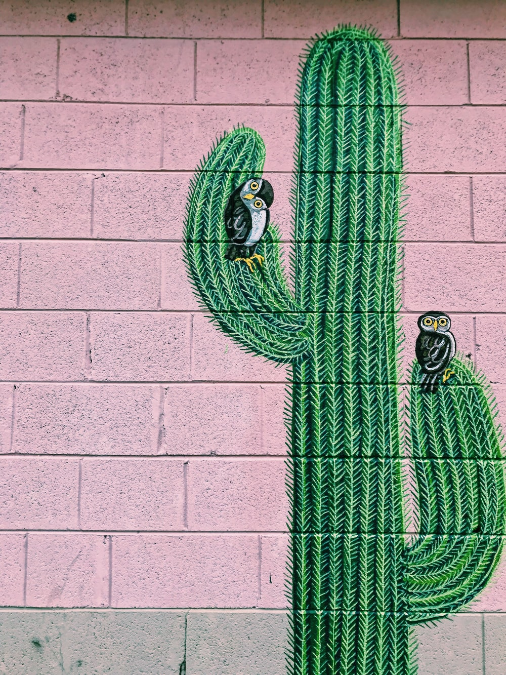 cactus with owls painting wall