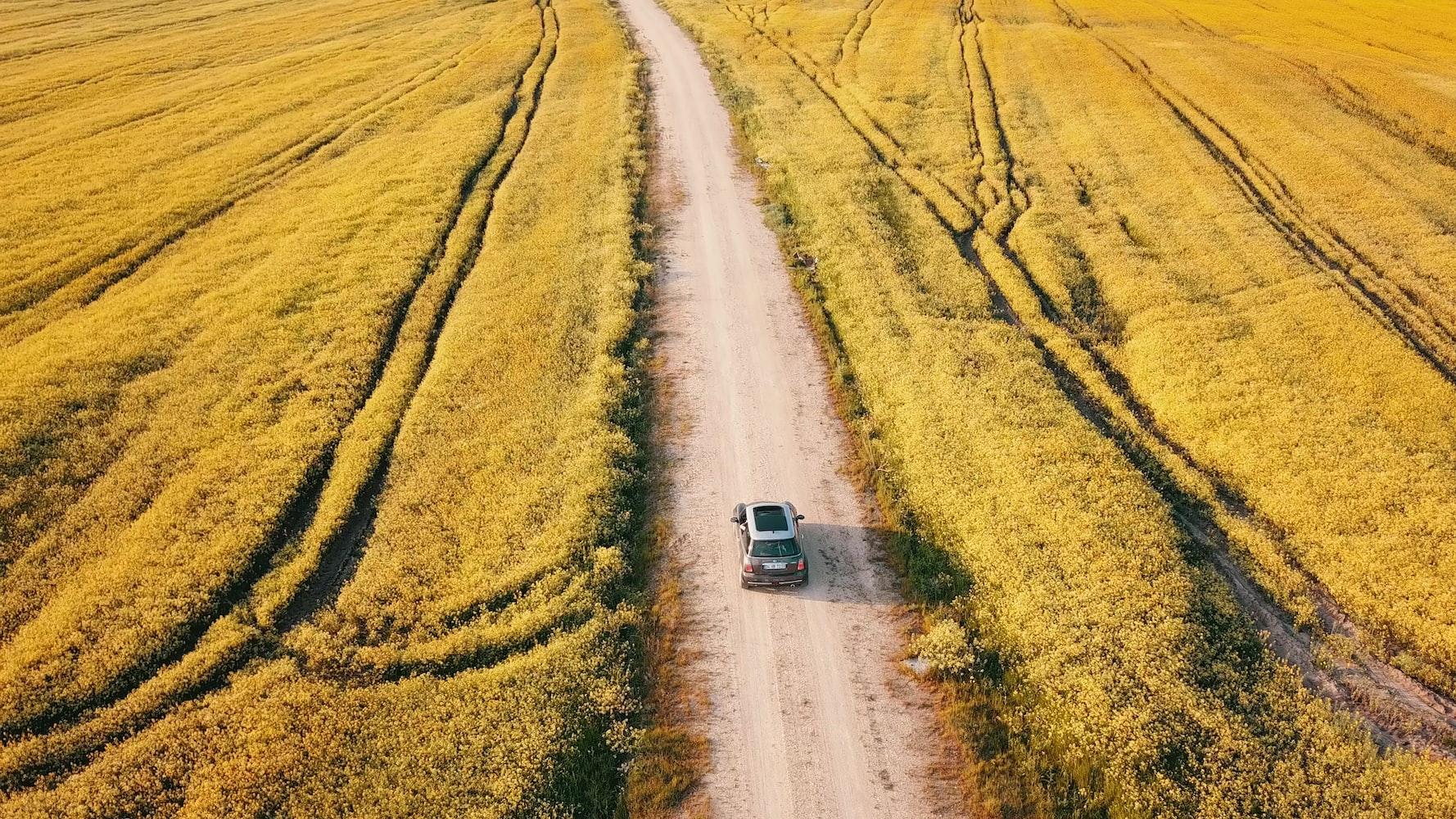 Grey Mini Cooper driving through a field