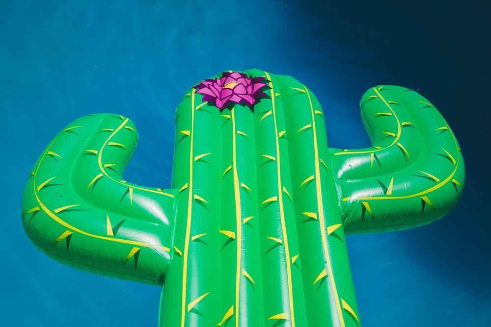 inflatable cactus buoy