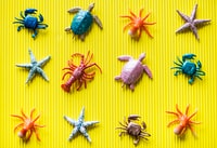 sea creatures plastic figures