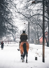 man riding horse during winter season