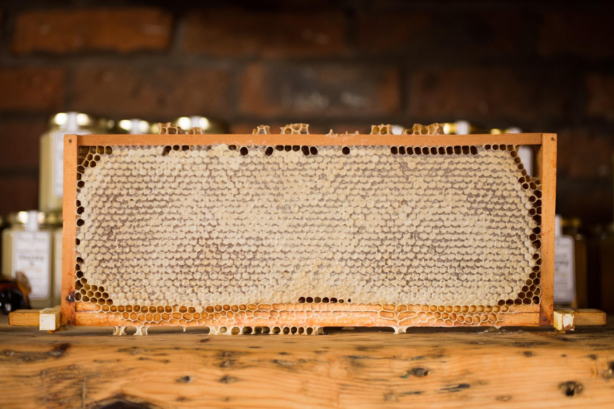 Tänk som bina - skaffa dig en söt buffert