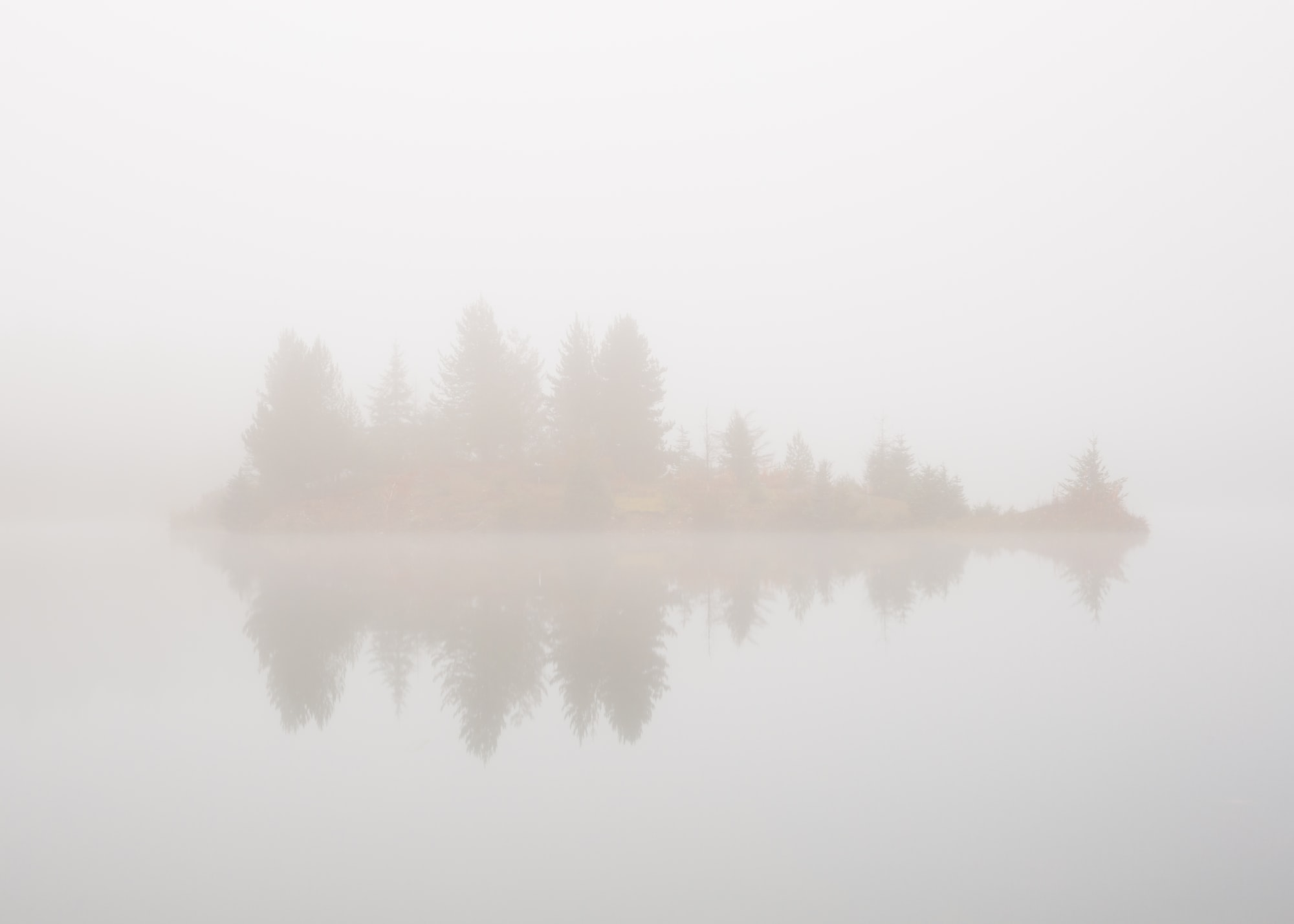 Such a foggy day at Gold Creek Pond in Washington. Normally you can see mountains behind this little island.