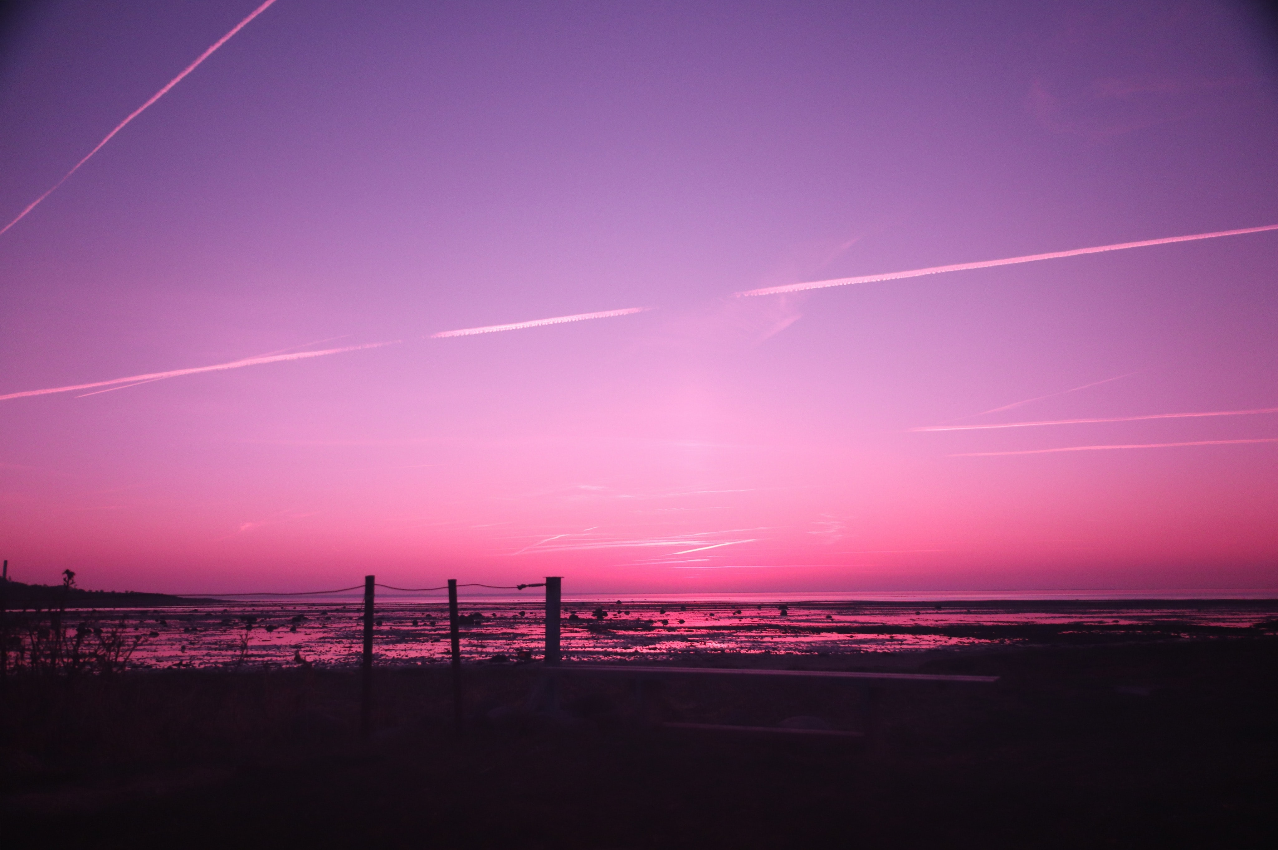 silhouette photography of seashore under clear sky