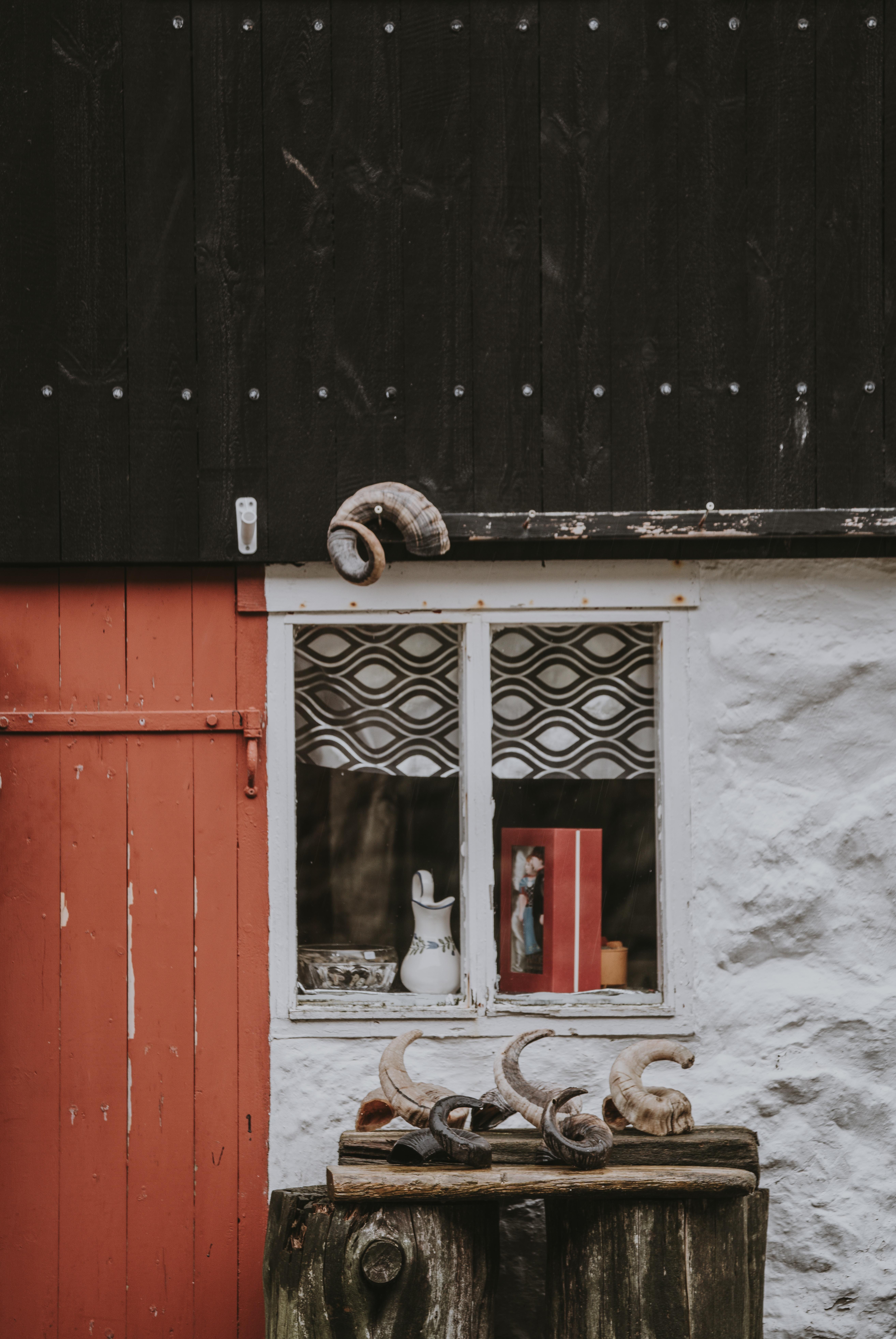 pitcher on white windowpane