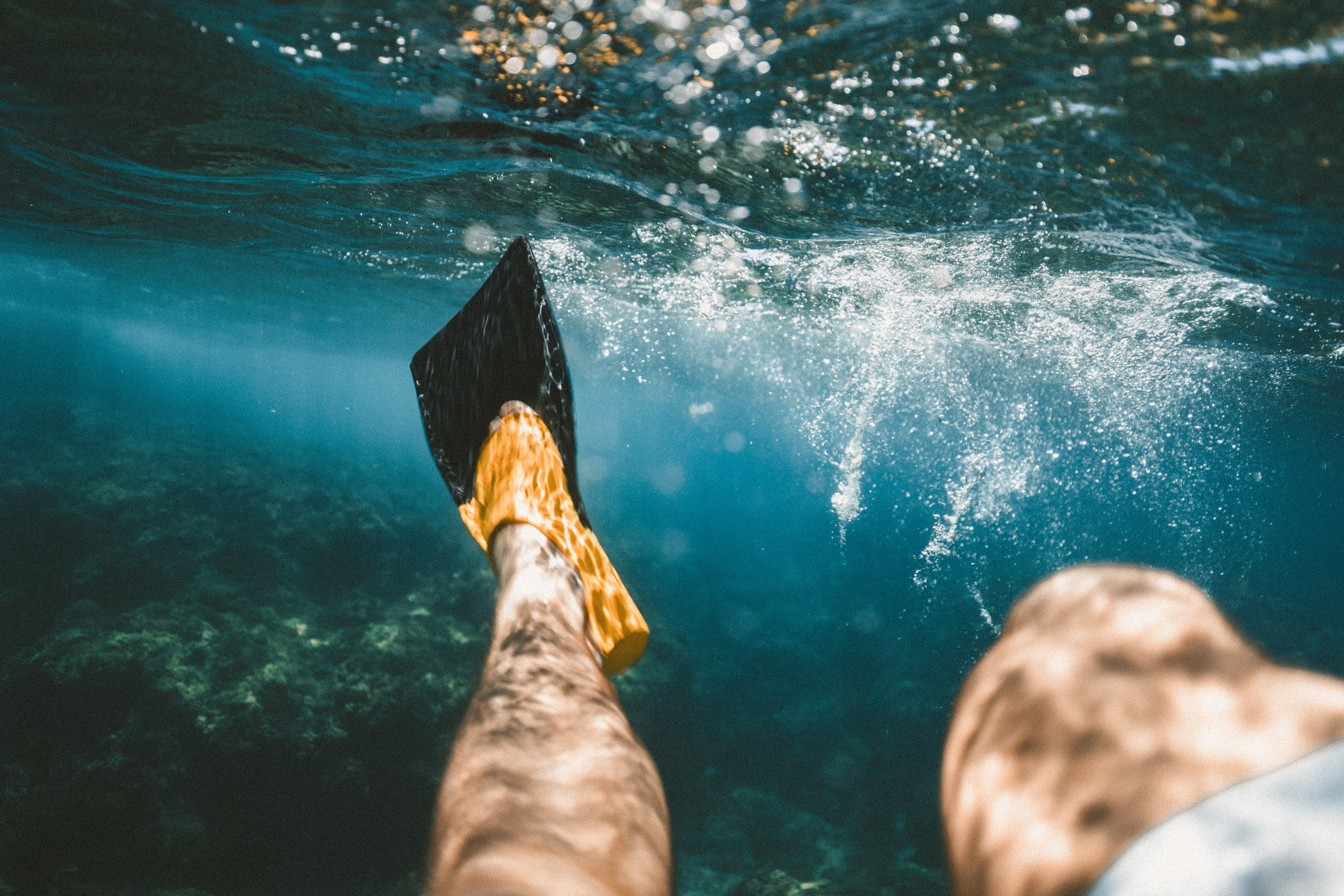 closeup photo of person diving underwater