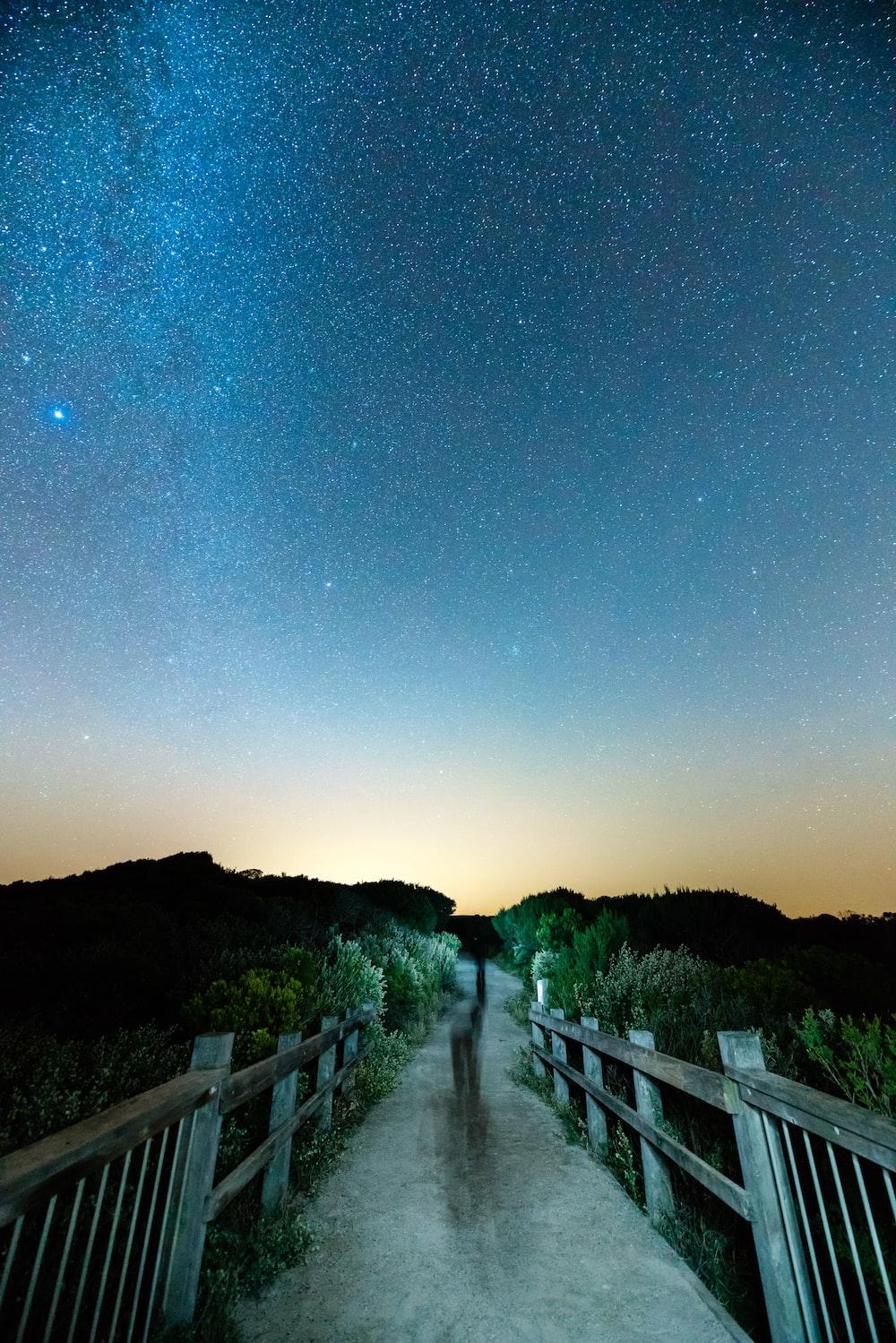 gray wooden bridge under night sky