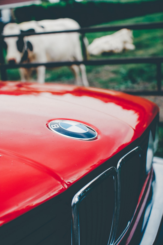 closeup photo of red BMW car