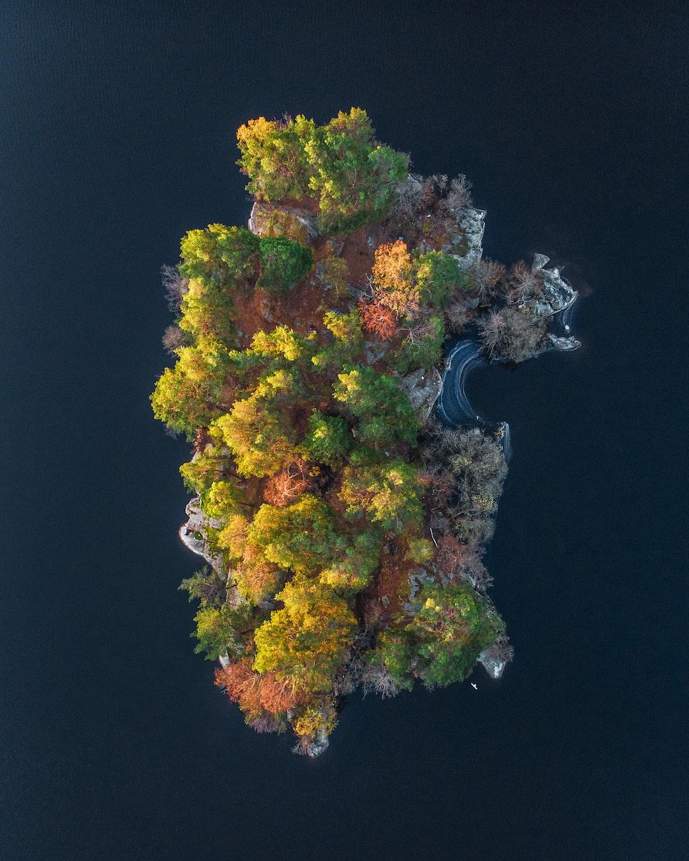 aerial photo of island