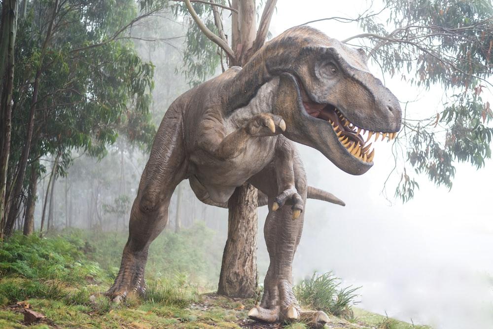 brown dinosaur illustration