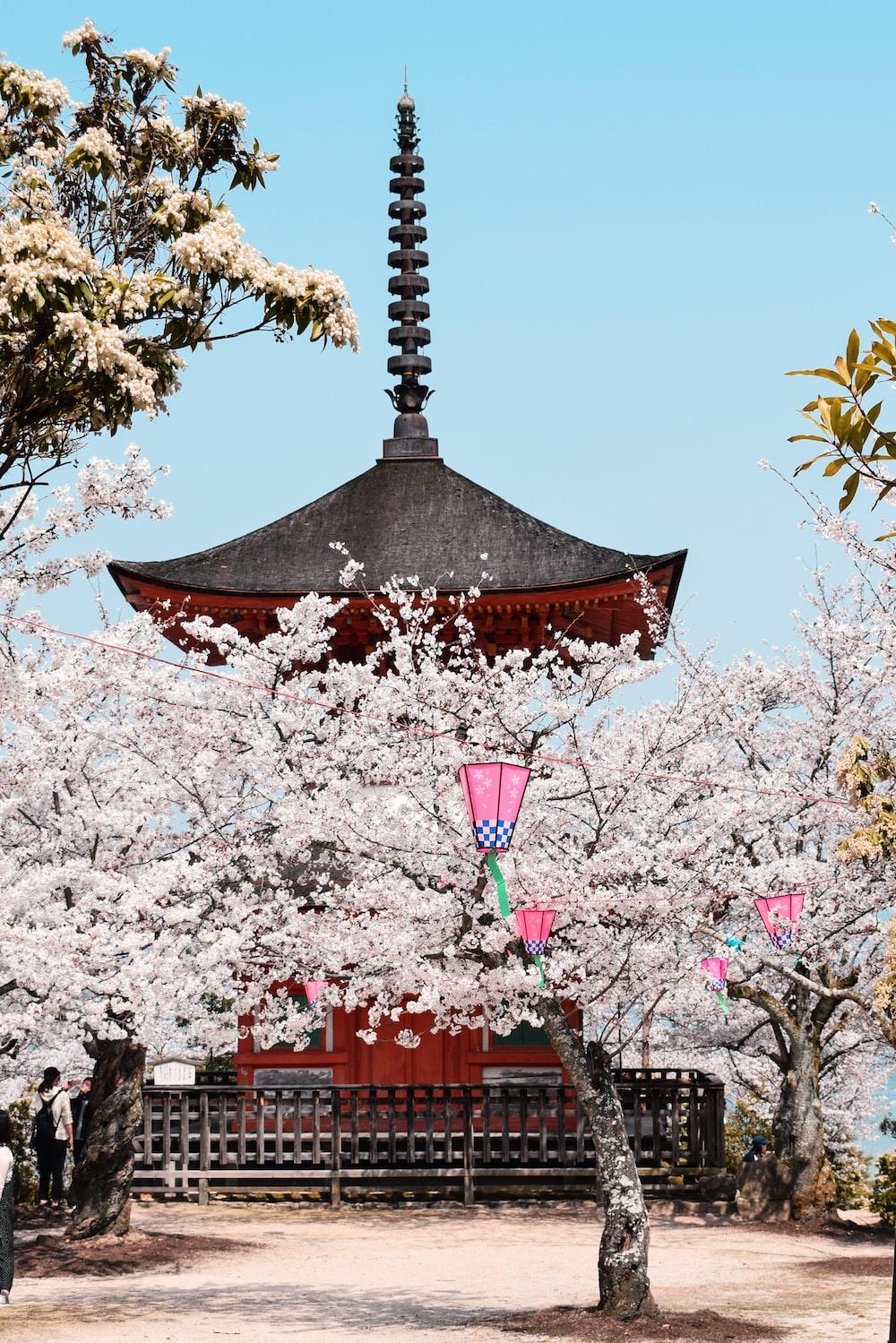 gray and red pagoda