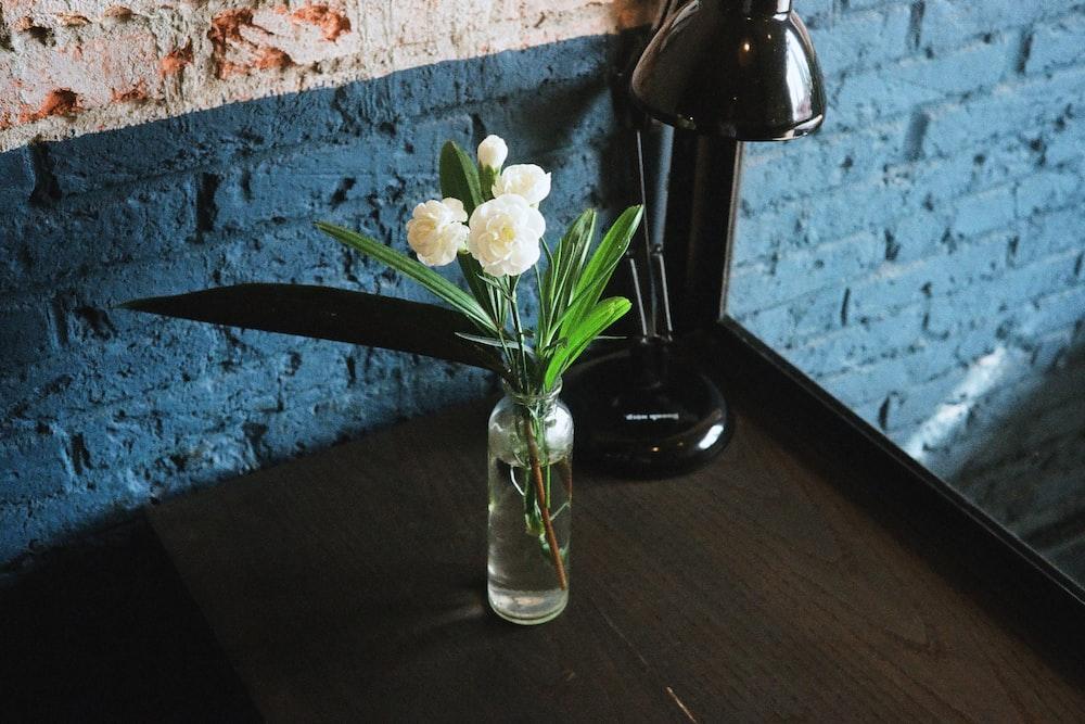 White Flower At My Favorite Cafe Photo By Nam Quach Namquach On