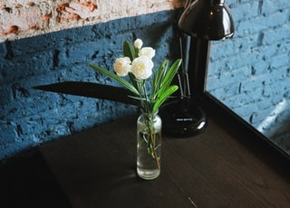 green leafed plant and white flowers in clear glass vase placed on brown wooden surface