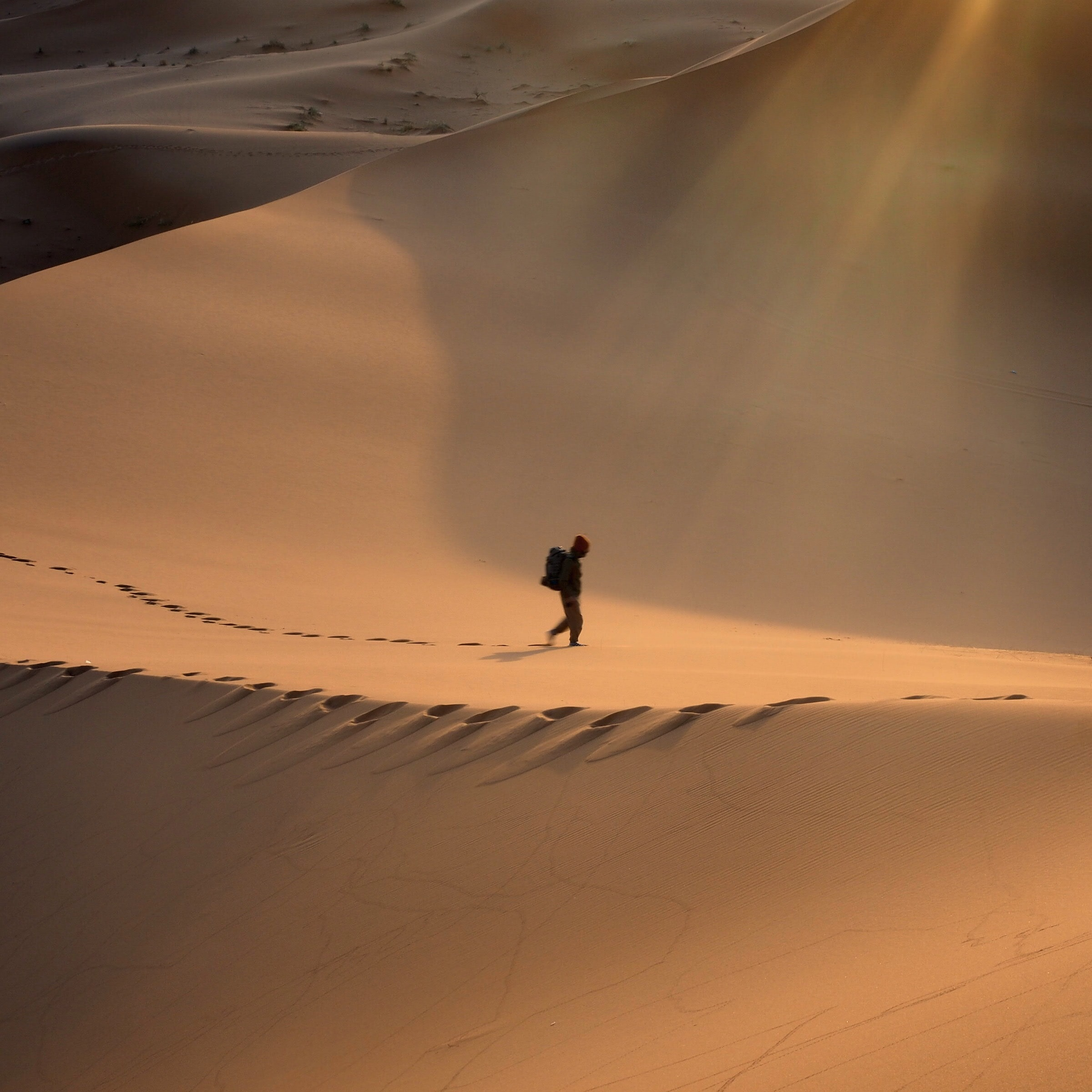 Desert Alone Footsteps And Wanderlust Hd Photo By Monica Valls