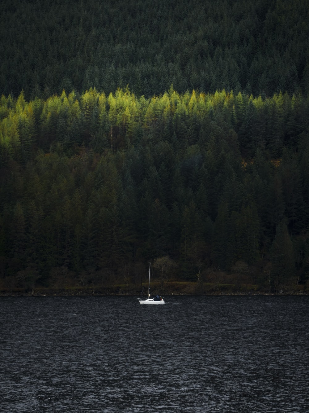 sailing boat in body of water