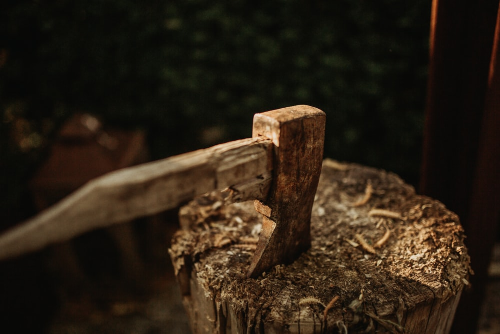 brown wood chunk