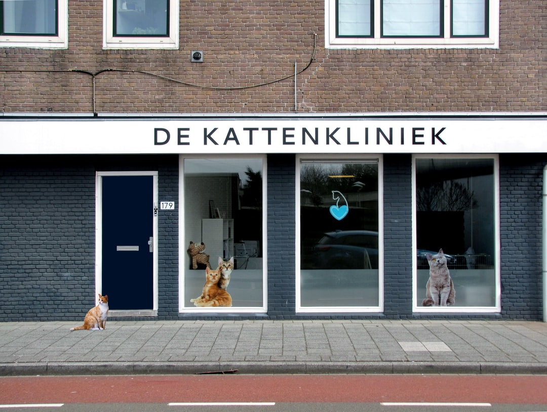 """This cat clinic (""""kattenkliniek"""") is located in the city of Zwolle, the Netherlands."""