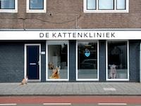 De Kattenklniek store beside orange and white cat at daytime