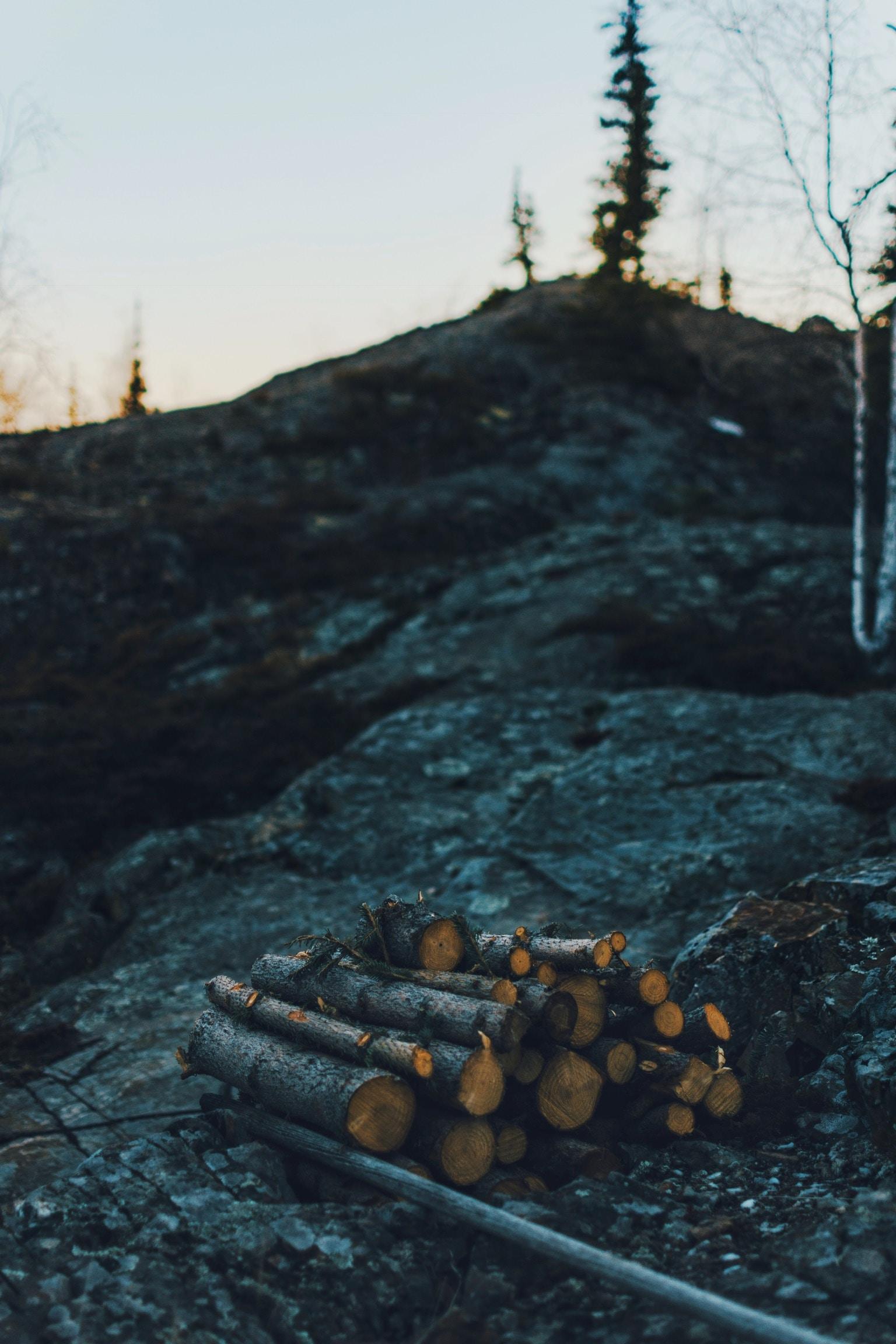 wood logs on boulder