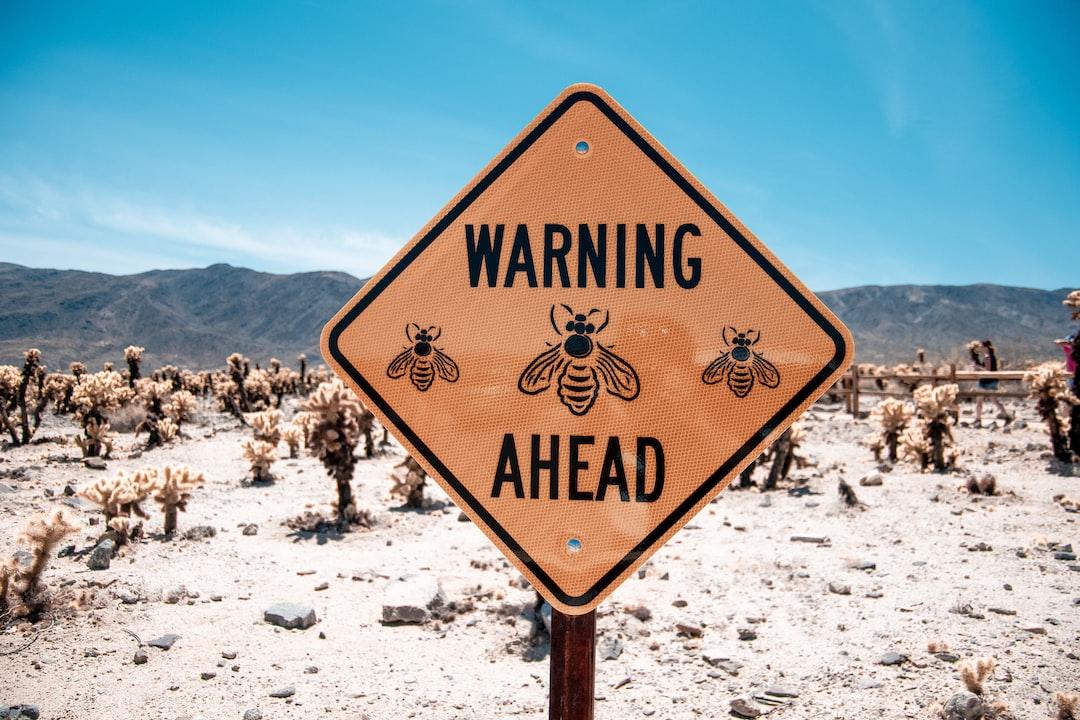 Warning Bees ahead signage near cactus