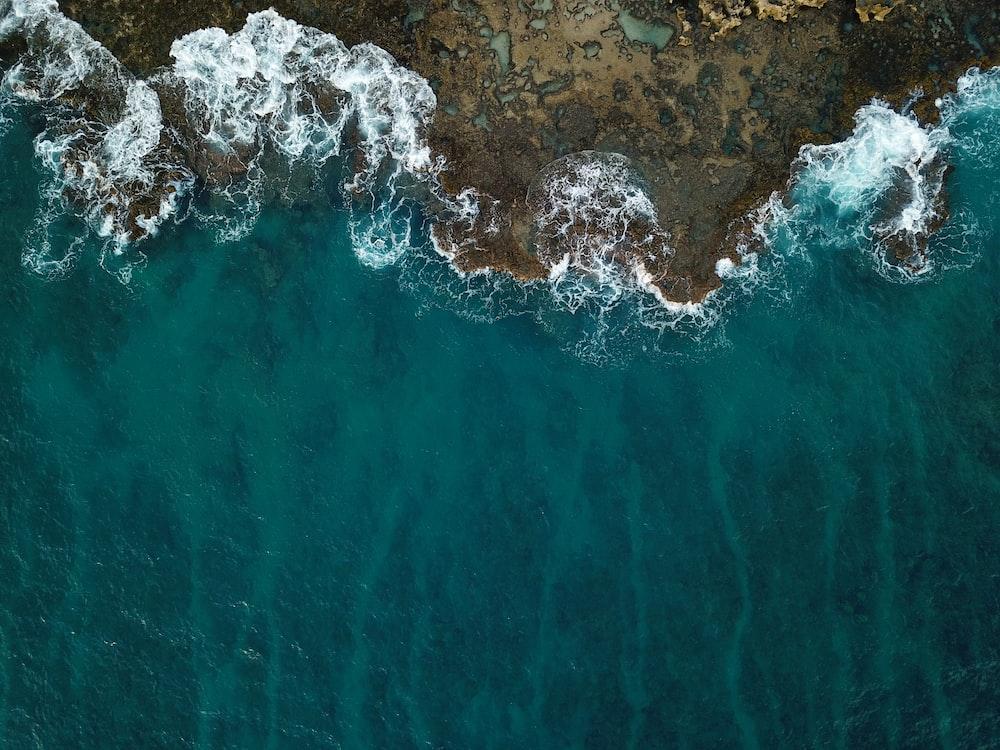 bird's-eye view of seashore