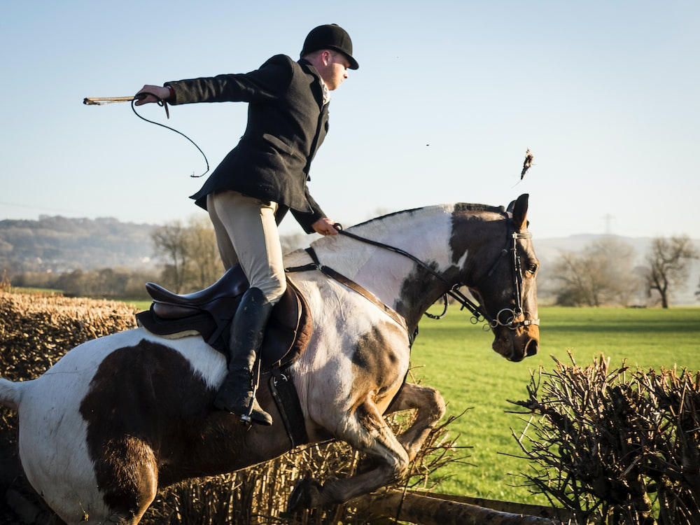 Equilab Equestrian App Lets You Track Your Progress - Sports