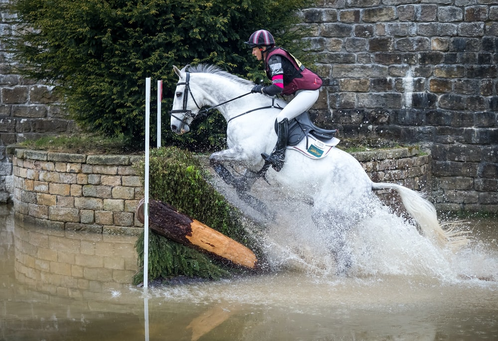 man riding on horse jumping over hedge