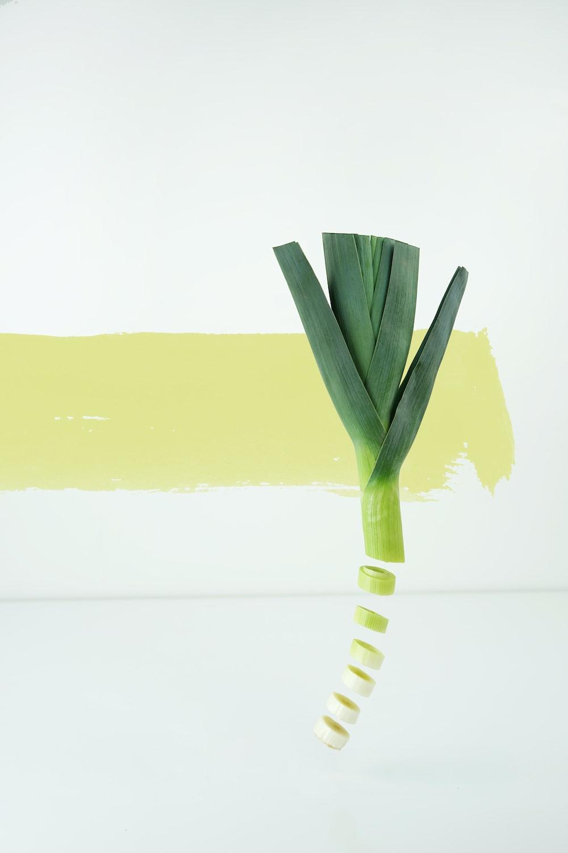 closeup photo of sliced spring onion